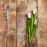 Kreativer Blumen-Hintergrund Stockbilder