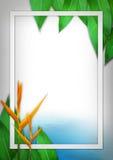Kreativer Plan, Blätter und Blumenhintergrund, Naturkonzept vektor abbildung
