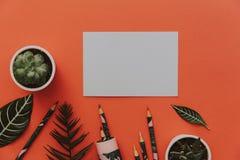 Kreativer Plan mit tropischen Blättern, leerem freiem Raum und Bleistiften Stockfoto