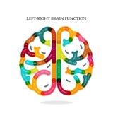 Kreatives infographics Funktionsidee gelassenen und rechten Gehirns lizenzfreie abbildung