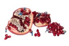 Kreatives Konzept mit Miniaturarbeitskräften nehmen die Samen des Granatapfels heraus Stockbilder
