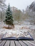 Kreatives Konzept Winterlandschaftsmagiebuch Lizenzfreie Stockfotos