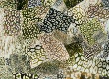 Kreatives Kunststimmungsbrett Die handgemachte zeitgenössische Collage, die von den Zeitschriften und vom bunten Papier gemacht w vektor abbildung