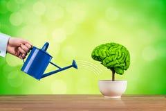 Kreativität und Gehirnfunktionswachstum Lizenzfreie Stockbilder
