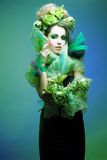 Kreatywnie dama. Fotografia Stock