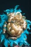 Kreatywnie fryzura od hairpices ananas w piórkach Obraz Stock