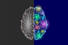 Kreatywnie i logika części mózg Analityki wyobraźni hemisfery strony umysłu konstruktywnie artystyczna funkcja depresja poli- ilustracji
