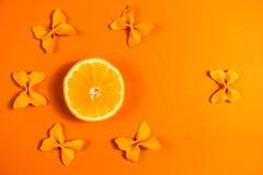 Kreatywnie lato układ robić pomarańcze i barwiący makaron manny papillon na jaskrawym pomarańczowym tle Owocowy minimalny pojęcie obrazy royalty free