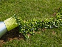 Kreatywnie ogrodowa rzeźba robić z roślinami zdjęcie royalty free