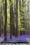 Kreatywnie pojęcie strony książkowego Wibrującego bluebell dywanowa wiosna fo Obrazy Royalty Free