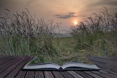 Kreatywnie pojęcie strony książkowy wschodu słońca krajobraz w lata looki Zdjęcie Royalty Free