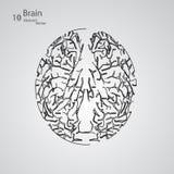 Kreatywnie pojęcie ludzki mózg Obraz Stock