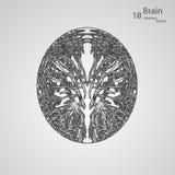 Kreatywnie pojęcie ludzki mózg Obrazy Stock