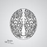 Kreatywnie pojęcie ludzki mózg Zdjęcie Royalty Free