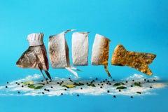 Kreatywnie pomysł rybi omijanie od surowego, Obraz Royalty Free