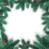 Kreatywnie rama robić Bożenarodzeniowe jodeł gałąź na białym tle z sosnowymi rożkami xmas karciany nowy rok ilustracja wektor