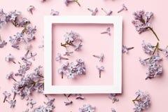 Kreatywnie ramowy uk?ad robi? lila wiosna kwitnie na r??owym tle obrazy royalty free