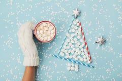 Kreatywnie skład z kobiety ręką w mitynka chwyta filiżance gorący kakao, czekolada lub bożego narodzenia jedlinowy drzewo robić m zdjęcie stock