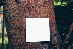Kreatywnie układ robić kwiaty i liście z papierowej karty notatką Fotografia Stock