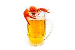 Krebs River&beer Stockbild