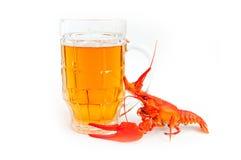 Krebs River&beer Lizenzfreie Stockbilder