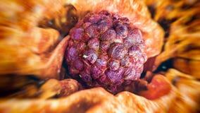 Krebs-Zelle - Wiedergabe 3D lizenzfreie abbildung