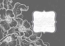Kreda kwitnie blackboard ramę ilustracja wektor