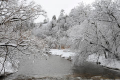 Kredietrivier in de koude de winterochtend stock afbeelding
