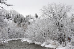 Kredietrivier in de koude de winterochtend Royalty-vrije Stock Foto