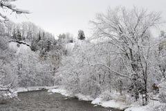 Krediteringsflod i den kalla vintermorgonen Royaltyfri Foto