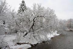 Krediteringsflod i den kalla vintermorgonen Royaltyfri Fotografi
