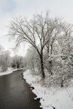 Krediteringsflod i den kalla vintermorgonen fotografering för bildbyråer