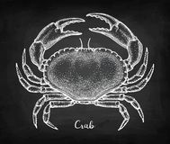 Kredowy nakreślenie jadalny krab ilustracja wektor