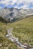Kreek in bergvallei, Oostenrijkse/Italiaanse Alpen. Stock Afbeeldingen