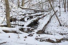 Kreek in bevroren de winterlandschap stock foto's
