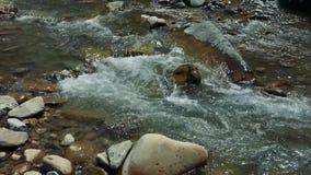 Kreek in de bergen Koude duidelijke stroom tussen rotsen stock videobeelden