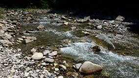 Kreek in de bergen Koude duidelijke stroom tussen rotsen stock video