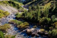 Kreek in Gletsjer Nationaal Park royalty-vrije stock foto