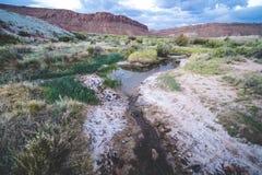 Kreek langs de Gevoelige Bogensleep in Bogen Nationaal Park Zonsopgang royalty-vrije stock afbeeldingen