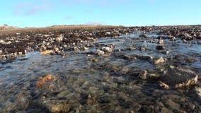 Kreek schoon duidelijk water op stenen na smeltende ijs en sneeuw in Noordpoolsvalbard stock videobeelden