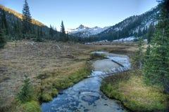 Kreek, Wallowa Bergen, Oregon royalty-vrije stock afbeeldingen