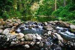 Kreek in wildernis van Hawaï Stock Afbeeldingen