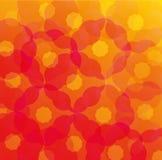 Kreis-Blumen-Zusammenfassungs-Hintergrund Stockbilder