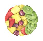 Kreis des gesunden frischen Obstsalats lokalisiert auf weißem Hintergrund lizenzfreie stockbilder