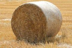 Kreis-Hay Bale Stockfotografie