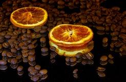 Kreis mit zwei Orangen Stockfotos