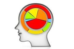 Kreisdiagramm im menschlichen Kopf Stockfotografie