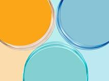 Kreise des Hintergrundes drei Lizenzfreies Stockfoto