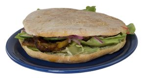 Kreiselkompasse auf Platte (kebab) Lizenzfreie Stockfotografie