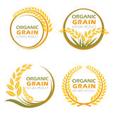 Kreisen Sie organische Kornprodukte des ungeschälten Reises und gesundes Lebensmittelvektordesign ein Stockbild